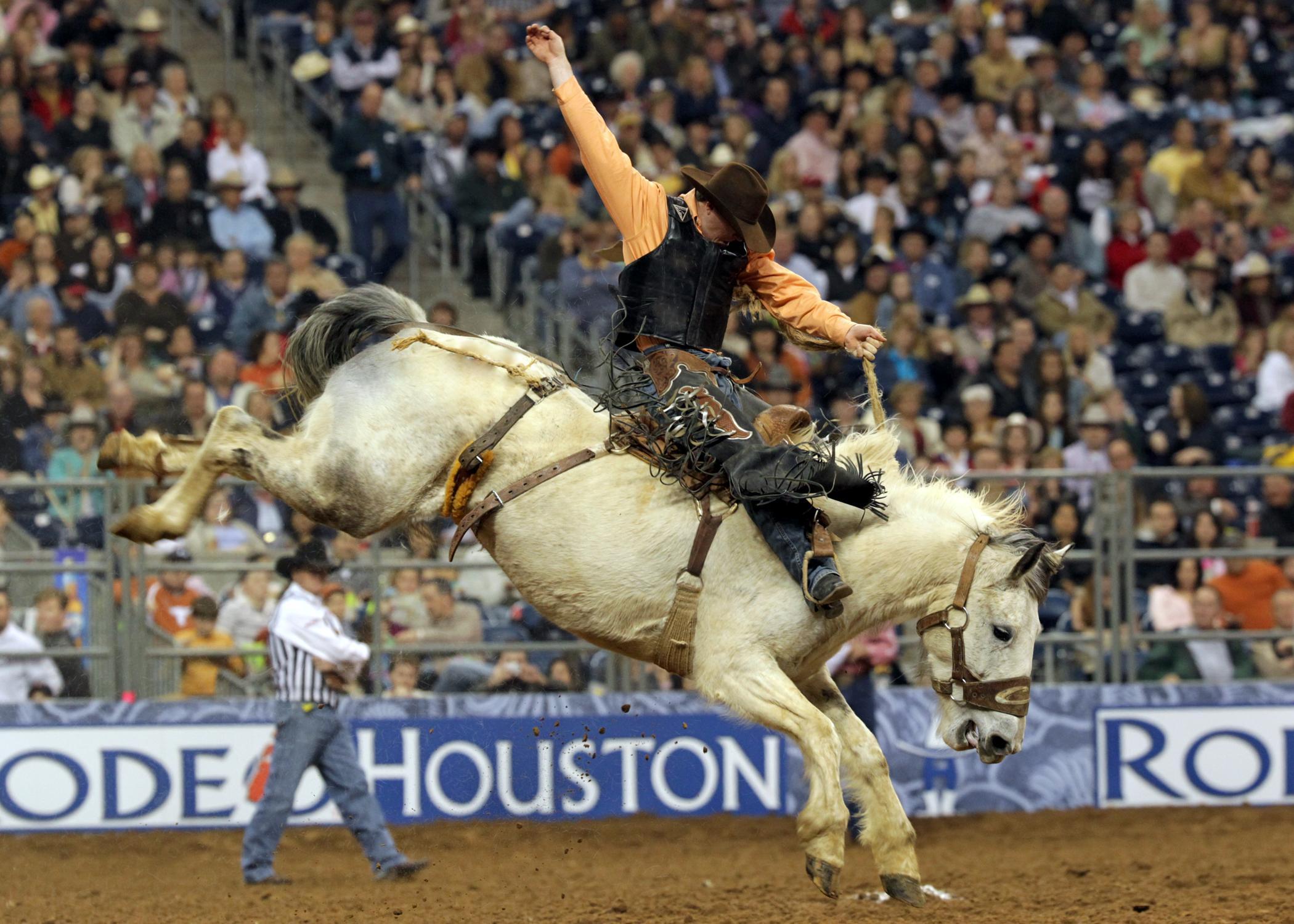 Top Events Houston Rodeo Adele Boston Celtics Justin Bieber Mumford amp Sons Boston Red Sox